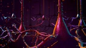 Neurones Photo stock