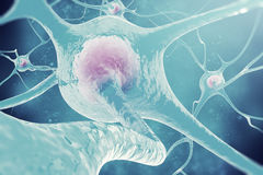 Neurones du système nerveux cellules nerveuses de l'illustration 3d Photographie stock libre de droits