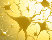 Neurones Stock Photo