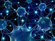 Neuroni. illustrazione di stock