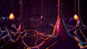 Neuroni Immagini Stock Libere da Diritti