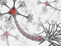Neuroni (il lampo di genio) Fotografia Stock Libera da Diritti