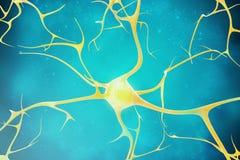 Neuroni nei bei precedenti illustrazione 3d di un'alta qualità Fotografia Stock Libera da Diritti