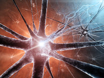 neurons Arkivfoto