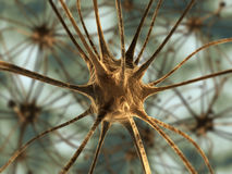 neurons stock illustrationer