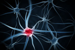 Neurons abstract background Stock Images