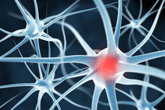 Neurons abstract background Royalty Free Stock Images