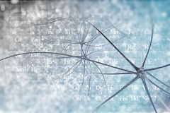 Neurons. On the beautiful backdrop royalty free illustration