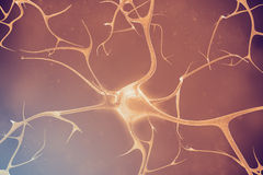 Neurons in the beautiful background. 3d illustration of a high quality Royalty Free Stock Photography