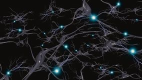 Neurons. Brain cells with electrical firing Royalty Free Stock Photography
