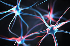 Neurons in the brain Royalty Free Stock Photography