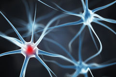 Neurons in the brain. 3d render royalty free illustration