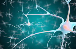 Neurons in the brain with focus effect. 3d rendering Stock Photography