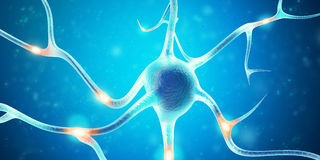 Neurons in the brain with focus effect. 3d rendering Royalty Free Stock Images