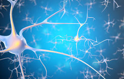 Neurons in the brain with focus effect. 3d rendering Royalty Free Stock Photo