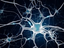 Neurons in the brain. Multipolar neuron on blue background Stock Photo