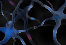 Neurons connected in brain 3d illustration. Neurons in the brain transmiitting signal 3d render Royalty Free Stock Photos