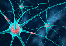 Neurons. A 3D illustration representing organic neuron neurons cell cells in action stock illustration