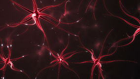 Neurons forming a neural network stock footage