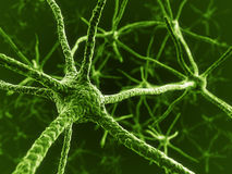 Neurons in green. 3d rendering of green neurons stock illustration