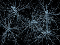 Neurons network. A microscopic scan of neurons network Stock Image