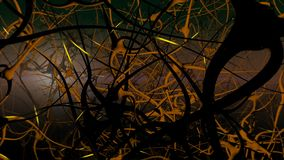 Neurons network. stock footage
