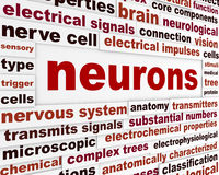 Neurons scientific words poster Stock Image