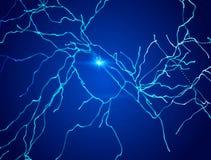 Neurons synapses, strömkrets för nerv- nätverk av neurons, hjärna, degenerative sjukdomar, Parkinson royaltyfri illustrationer