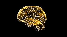 Neurons Transmit Messages In The Brain. Neurons are the cells that pass chemical and electrical signals.