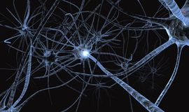 Neurons working detail. thinking. Impulse nerve running Stock Photos