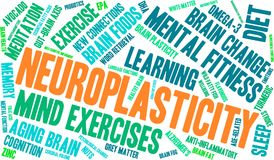 Neuroplasticity Word Cloud. On a white background Stock Photos