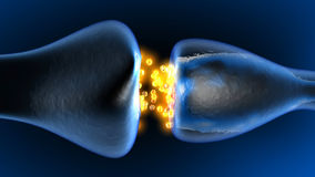 Neurotransmission w Synapse ilustracja wektor