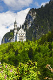 Neuschwanstein above Royalty Free Stock Photos