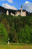 Neuschwanstein Castle. View of Neuschwanstein castle from flower covered valley Royalty Free Stock Photos
