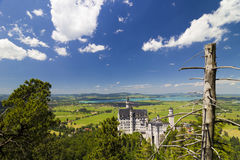 Neuschwanstein Castle and nature Royalty Free Stock Photo