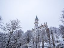 Neuschwanstein Castle in winter landscape. Germany royalty free stock images