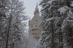 Neuschwanstein kasztel w zima czasie między drzewami Fussen Niemcy Obraz Royalty Free