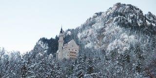 Neuschwanstein kasztel w zimie Zdjęcie Stock