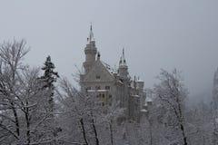 Neuschwanstein-Schloss in der Winterzeit zwischen Bäumen Fussen deutschland Lizenzfreies Stockbild