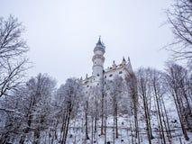 Neuschwanstein slott i vinterlandskap germany Arkivbild