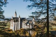 Neuschwanstein slott till och med träd fotografering för bildbyråer
