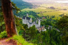 Neuschwanstein top view and castle Royalty Free Stock Photo