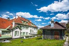 Neuschwanstein - Tyskland Royaltyfri Fotografi