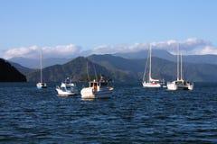 Neuseeland stockfotos