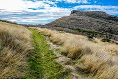 Neuseeland 27 Lizenzfreies Stockfoto