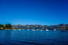 Neuseeland 26 Lizenzfreie Stockfotografie