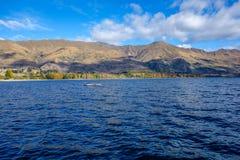 Neuseeland 50 Stockfotografie