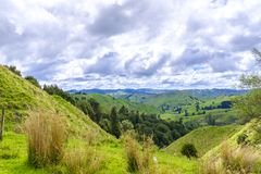 Neuseeland-Ackerlandpanorama Stockfotos