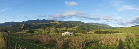 Neuseeland-Bauernhof-Panorama Lizenzfreie Stockfotos