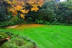 Neuseeland-Garten-Szenenlandschaftsgestaltung Lizenzfreie Stockbilder